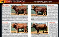Some more bulls and descriptions