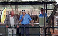 Joggie discussing one of the auction bulls.