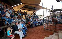 Numerous guests at bull discussion.